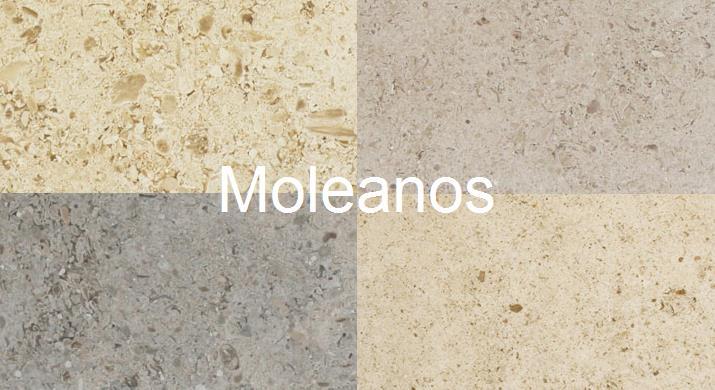 Moleanos-Brief-History